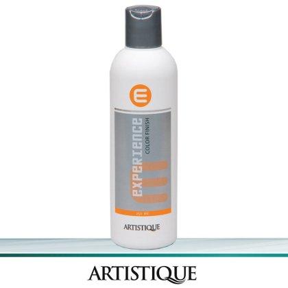 Artistique Experience Color Finish 250 ml