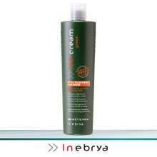 Inebrya Ice Cream Green Post-Treatment Shampoo 300ml