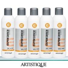 Artistique Experience Activator 1L